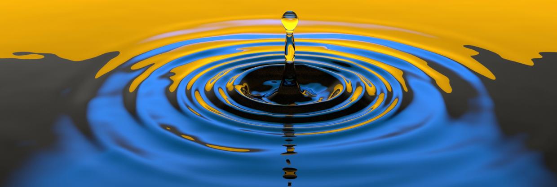 Führung: Das Prinzip Des Inneren Kreises